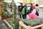 박람회를 찾는 시민 선착순 2000명에게 꽃묘를 나누어주고 있다