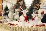 사진제주KAL호텔 크리스마스 디너 특선뷔페는 24일~25일 양일간 17:30~21:30까지 특선 뷔페 2부제로 운영한다.
