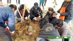 고창베리팜영농조합법인이 지난 2012년에 조성한 베리팜힐링파크가 최근 전국 각지에서 오는 체험객들로 북적이고 있다.