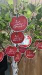 희망사과나무 출범 희망메시지 전달