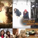 신국악 걸그룹 소리아밴드(SOREA Band)가 MBC 고향이 좋다의 새해 첫 방송으로 강원도 대관령 겨울여행을 다녀왔다(사진 MBC 고향이 좋다 캡쳐).