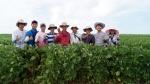 브라질 해외농업본부의 젊은 농부들