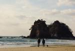 여행전문 커뮤니티 디비디비스토리는 허전함을 달래고 미리 봄을 마중갈 수 있는 국내 여행지 세 곳을 공개했다.