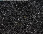 타누스 아이테르를  현미경으로 본 셀 구조