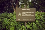 K-POP Group EXO Baekhyun Forest at Neulbut park, Gangnam-gu in Seoul city.