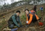 경기도 여주에서 열린 2014 신혼부부 나무심기 참가자들이 정성스레 묘목을 심고 있다.