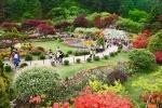 아침고요수목원, 18일~내달 31일 봄꽃 대축제 개최…18일부터 한 달간 가장 화려해