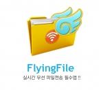FlyingFile 제품 이미지