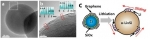 SiC-free(Silicon carbide-free) 그래핀 직성장 실리콘 음극 소재를 이용한 고용량 고내구성 리튬이온전지 구현 연구 그래픽