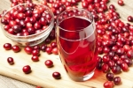크랜베리는 우리가 흔히 먹는 대부분의 과일들보다 더 많은 자연 생성 폴리페놀을 함유하고 있다. 저널 오브 뉴트리션에 발표된 새로운 연구에 따르면, 하루에 두 컵의 저칼로리 크랜베리 주스를 마시면 심장병, 당뇨 및 뇌졸중 등의 만성질환의 위험이 감소함을 보여주고 있다.