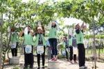 우정공무원교육원 교직원들이 천안시 성거읍 모전1리 포도농가에서 포도 봉지씌우기 작업을 하고 있다