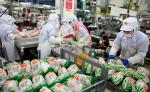 7월13일 초복을 앞두고 닭고기 전문기업 하림이  24시간 풀 가동 체제에 들어갔다.