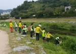 하림 피오봉사단이 정읍천 창포식재활동을 했다