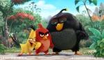 로비오 엔터테인먼트가 공개한 2016 상반기 개봉 예정인 앵그리버드: 더 무비(Angry Birds) 1차 트레일러 영상 스틸컷