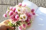모이와 문학동네의 꽃갈피 프로젝트