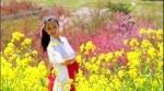 '후쿠시마의 봄', 하나미야마 공원에서 '신의 뜻대로' 노래에 맞춰 춤을 추다.