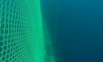 강원도 동해안 황동어망 수중가두리 (사진제공: 국제구리협회)