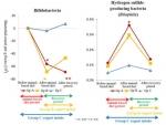 (도표 2) 연구 결과 (사진제공: Morinaga Milk Industry Co., Ltd.)