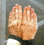 랑세스의 자회사 살티고가 해충 퇴치제의 주원료인 살티딘의 생산능력을 추가로 50% 확대한다