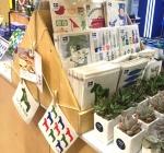 롯데마트 편집숍 어바니썸에 입점한 스웨덴 행주 스칸맘