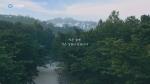 우리강산 푸르게 푸르게 - 작은숲엔 작은 감동이 있습니다