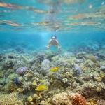 푸꾸옥 섬의 해양레져