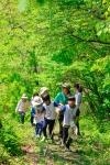 소외계층아동을 위한 숲생태감수성향상 프로젝트 와숲