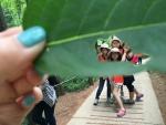 한화생명과 함께하는 와숲 활동에서 벌레들이 먹은 나뭇잎 구멍을 이용해 사진을 찍고 있다