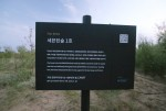 그룹 세븐틴의 데뷔 1주년을 기념하여 중국 닝샤자치구 마오쓰 사막 지역에 세븐틴숲이 조성되었다