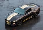 아드레날린 컬렉션 - 2016년형 포드 쉘비 GT-H 차량