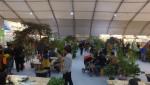 산림문화박람회장 숲 카페에서 숲의 향기를 맡으며 휴식을 취하는 관람객들