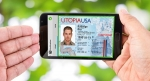 젬알토가 미국 내 디지털 운전면허증 시범 도입에 나선다