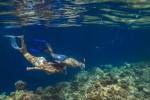 몰디브에 위치한 반얀트리 호텔과 앙사나 리조트가 인도양의 해양 생태계를 보호하기 위해 산호초 보호 프로그램을 강화한다