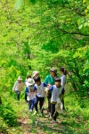 녹색교육센터가 4월부터 진행되는 와숲에 참가할 서울 소재의 지역아동센터를 모집한다