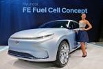 현대자동차가 2017 제네바 국제 모터쇼에서 수소전기차 기술력이 대거 집약된 'FE 수소전기차 콘셉트를 공개했으며 이를 통해 탄소 배출 제로인 미래 모빌리티의 비전을 제시했다