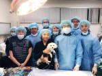 건국대동물병원 내과 박희명 교수 연구팀이 국내 소형 강아지의 대표적인 선천성 심장질환 가운데 하나인 동맥관개존증 폐쇄술을 국내 최초로 최단 시간에 성공했다
