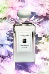 조 말론 런던(JO MALONE LONDON)이 출시하는 활짝 핀 섬세한 목련꽃에서 영감을 받은 스타 매그놀리아 컬렉션(Star Magnolia Collection) 리미티드 에디션