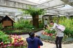도시에서 보기 어려운 나비들을 만날 수 있는 서울숲 나비정원이 5월 1일에 개장한다