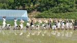 전통문화공연단 논두렁밭두렁과 한일고등학교 학생들