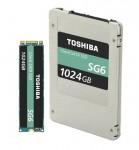 도시바 메모리 코퍼레이션이 SATA 클라이언트 SSD 제품군의 SG6 시리즈를 출시한다고 발표했다