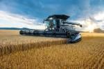 펜트 아이디얼: 수확의 기쁨 배가