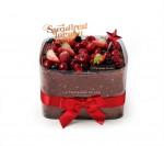 투썸플레이스가 고객들의 휴식을 더욱 빛내줄 크리스마스 케이크 2종을 출시했다