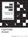 YG 디렉터 프로젝트 3기 발표회가 24일 개최한다. 사진은 YG 디렉터 프로젝트 결과발표회 The Colors Live 포스터