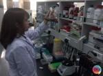 아미코스메틱 자체 R&D센터에서 연구중인 연구원