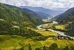 부탄 푸나카 계곡