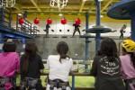 국립평창청소년수련원 챌린지 타워장에서 스쿨업캠프 참가 청소년들이 챌린지활동 프로그램을 체험하고 있다