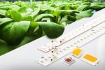 삼성전자가 출시한 식물생장용 LED 패키지 및 모듈