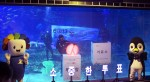 SEA LIFE 부산아쿠아리움이 선관위와 실시한 이색 투표 독려 이벤트