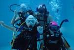 국립중앙청소년수련원 스킨스쿠버 가족캠프에 참가한 가족들이 스킨스쿠버장에서 다이빙을 하고 있다