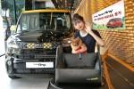 기아차 더 뉴 레이 차량(외관)과 튜온펫 카시트